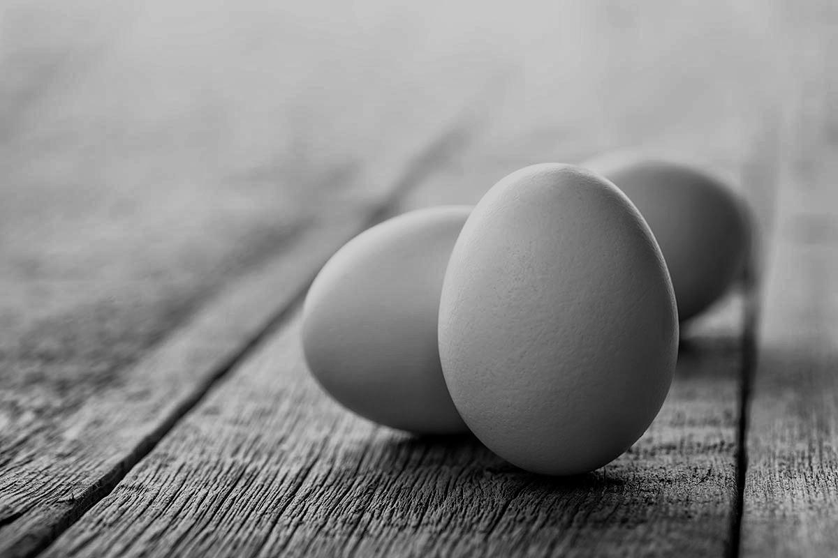 Seguridad renal y cardiovascular de las dietas bajas en HC y cetogénicas. Tercera parte